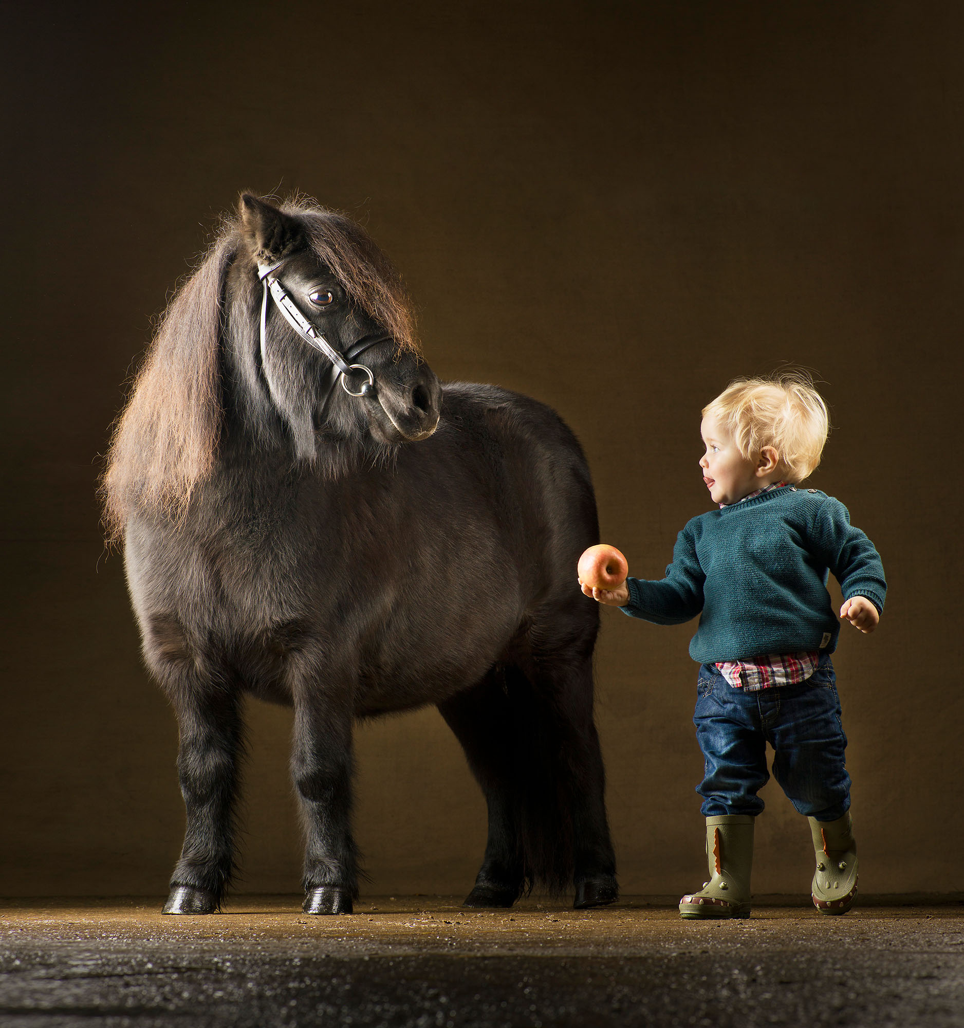 Shetland-Pony-and-Boy-Mark-Harvey-Photography